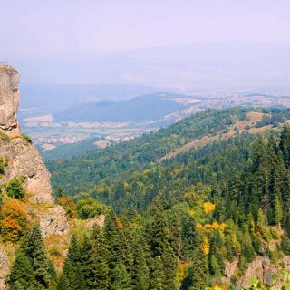 Half-day Hiking Tours